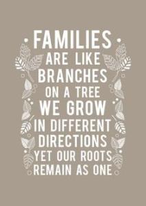 BFB160816 Families Logo